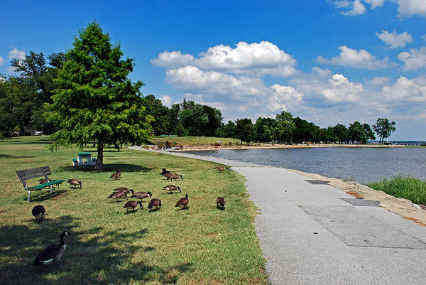 Delaware Park Wall Art - Photograph - Walking The Delaware by Skip Willits