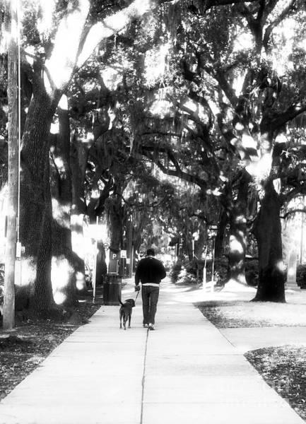 Dog Walker Photograph - Walking The Dog by John Rizzuto