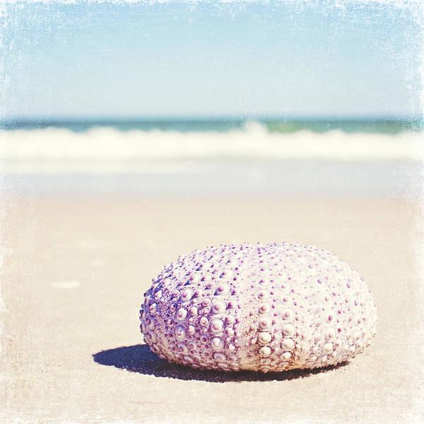 Beach Photograph - Walking The Shore by Carolyn Cochrane