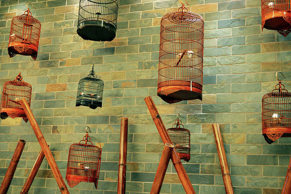 Birdcage Photograph - Wall Of Cages by Cheryl Chan