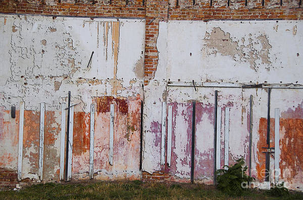 Photograph - Wall Of Colors by Terry Rowe