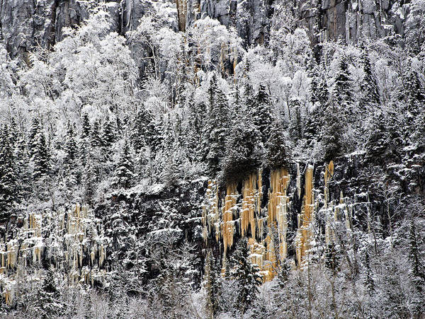 Photograph - Wall Of Winter by Doug Gibbons