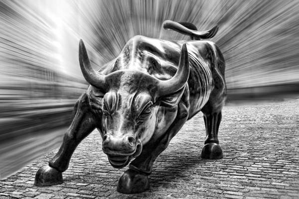 Wall Street Bull Black And White Art Print