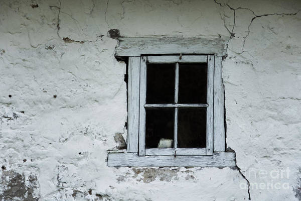 Photograph - Wall With Small Blue Window by Agnieszka Kubica