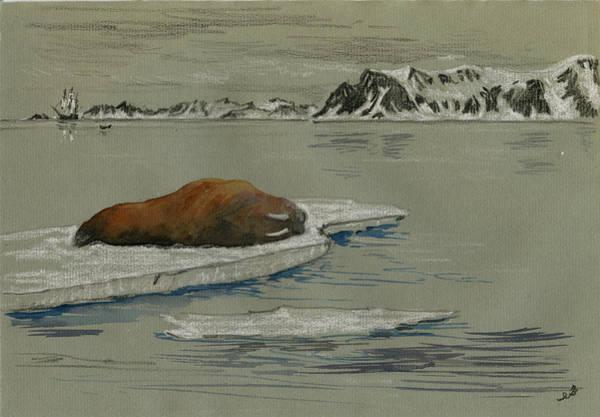 Ivory Painting - Walrus On The Iceberg by Juan  Bosco