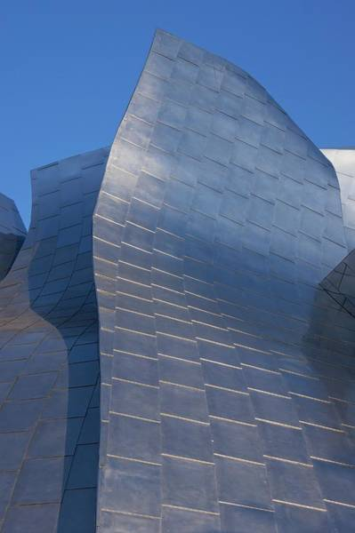 Stainless Steel Wall Art - Photograph - Walt Disney Concert Hall by Mark Williamson