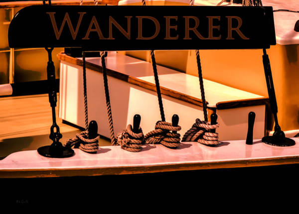 Photograph - Wanderer by Bob Orsillo