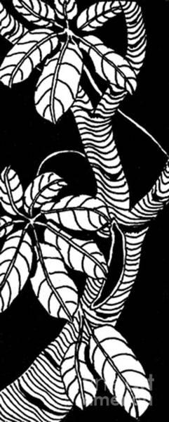 Oahu Drawing - Wandering Leaves Octopus Tree Design by Mukta Gupta
