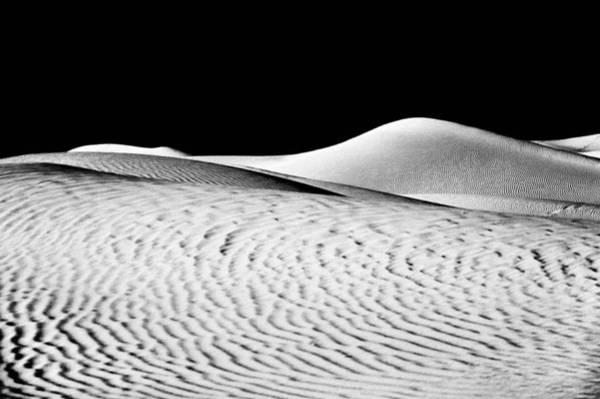 Wandering The Desert Art Print