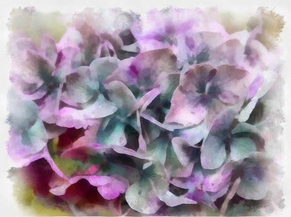 Photograph - Waning Hydrangea by Gerry Bates