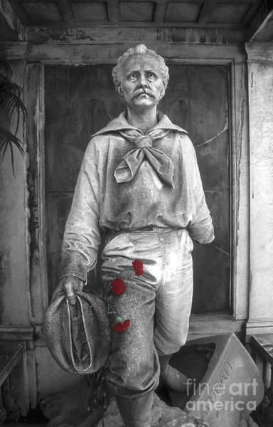 Photograph - War Hero by James Brunker