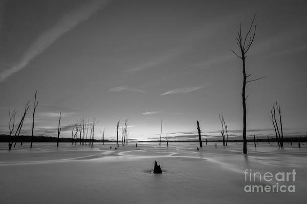 D800 Photograph - Warm Ice Bw by Michael Ver Sprill