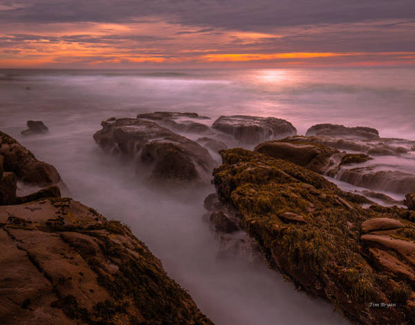 Photograph - Warm Mist-cambria by Tim Bryan