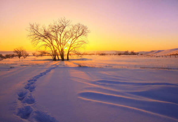 Wall Art - Photograph - Warm Snow by Kadek Susanto