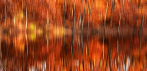 Autumn In New England Photograph - Warmth Impression by Lourry Legarde