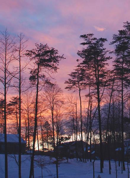 Warrenton Wall Art - Photograph - Warrenton Winter Evening by Armand Cabrera