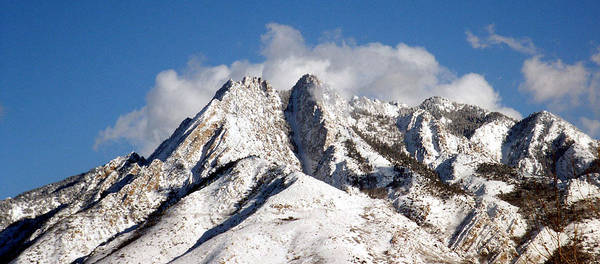Photograph - Wasatch by Tarey Potter
