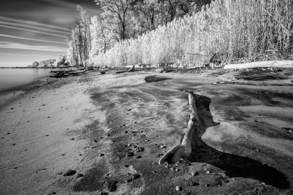 Lee Filters Wall Art - Photograph - Washed Ashore by Edward Kreis