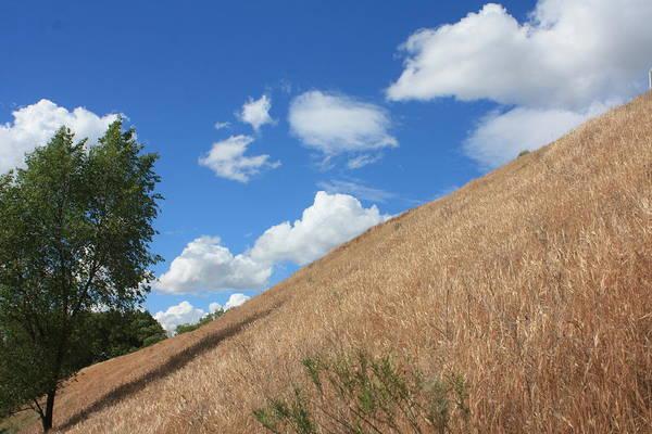 Photograph - Washington Countryside by Pat Moore