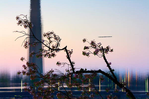 Photograph - Washington Monument Reflection With Cherry Blossoms by Karen Saunders