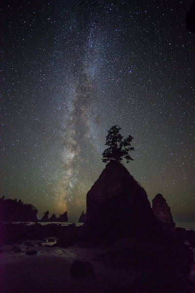 Photograph - Washington Shi Shi Beach Milky Way by TM Schultze