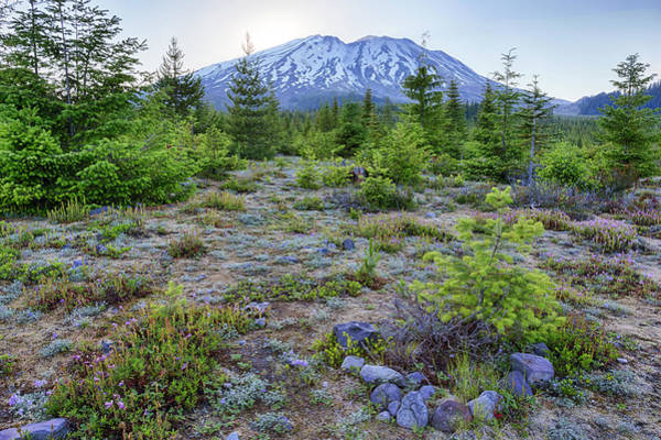 Volcanic Craters Photograph - Washington State, Mount Saint Helens by Jamie and Judy Wild