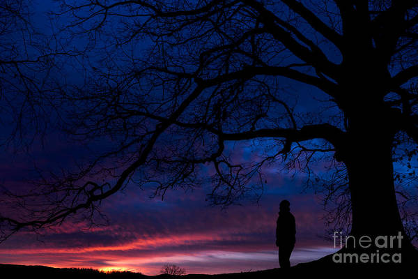 Photograph - Watching Dawn Of The Day by Thomas R Fletcher