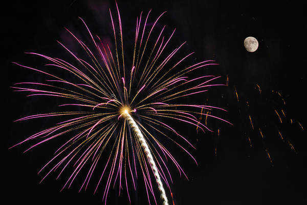 Photograph - Watching Pink And Gold Explosion - Fireworks And Moon I  by Penny Lisowski