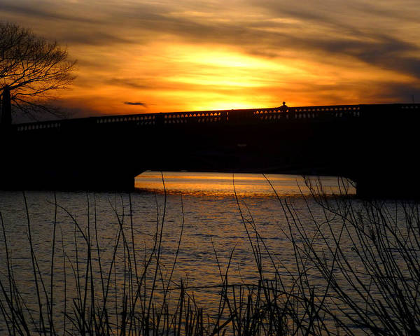 Photograph - Watching The Sunset From The John Weeks Bridge by Toby McGuire