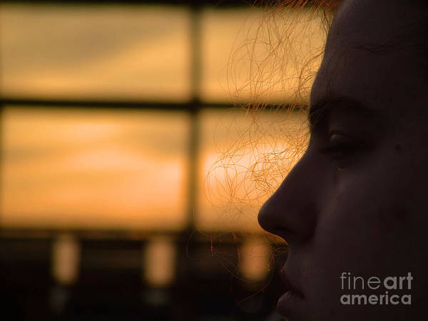Photograph - Watching The Sunset by Robyn King