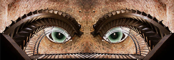 Wall Art - Photograph - Watching You by Paco Palazon