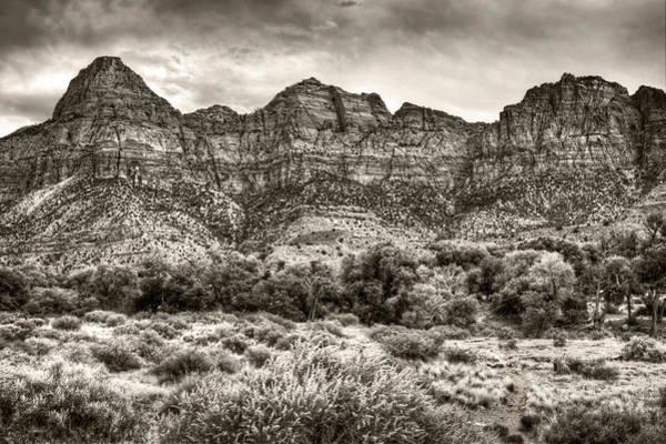 Wall Art - Photograph - Watchman Trail In Sepia - Zion by Tammy Wetzel