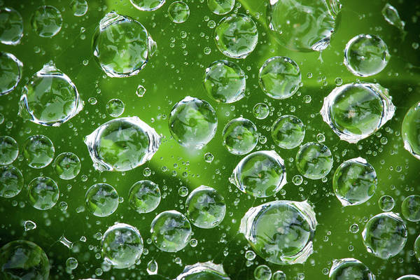 Environmental Issues Photograph - Water Droplets by Hudiemm