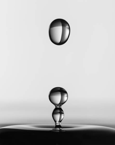Wall Art - Photograph - Water Drops by Jacqueline Hammer
