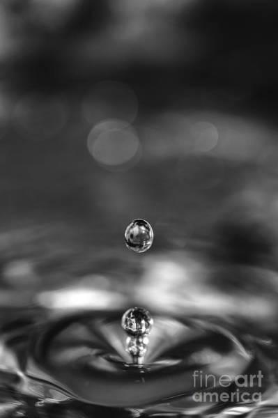 Photograph - Water Drops Rebound by Paul Cowan