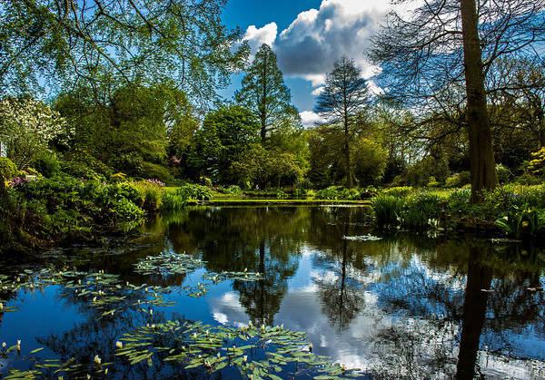Country Garden Photograph - Water Garden by Martin Newman