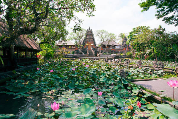 Indonesian Culture Photograph - Water Lilies In A Pond At The Pura by Panoramic Images