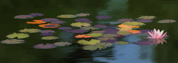 Art In Canada Painting - Water Lilies  Nymphaeaceae  On A Pond by Ron Harris