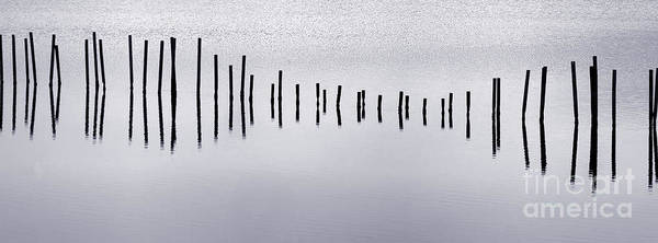 Photograph - Water Music by Olivier Le Queinec