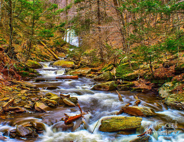 Photograph - Water Of Spring by Nick Zelinsky