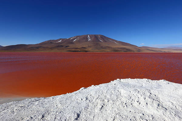 Photograph - Water On Fire At Laguna Colorada by James Brunker
