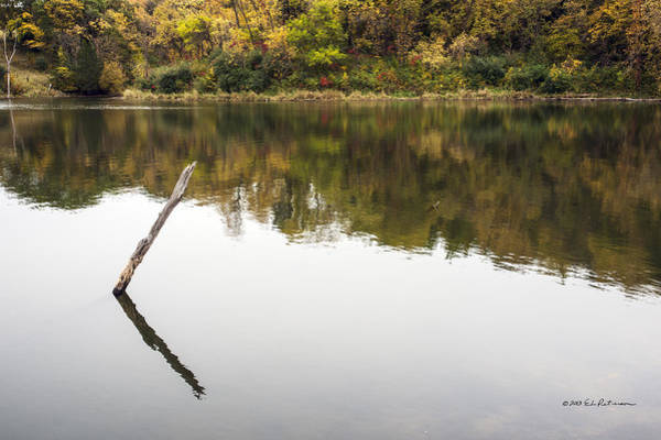 Photograph - Water Pole by Edward Peterson