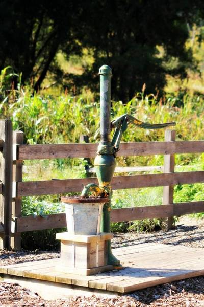 Photograph - Water Pump by Rebecca Frank