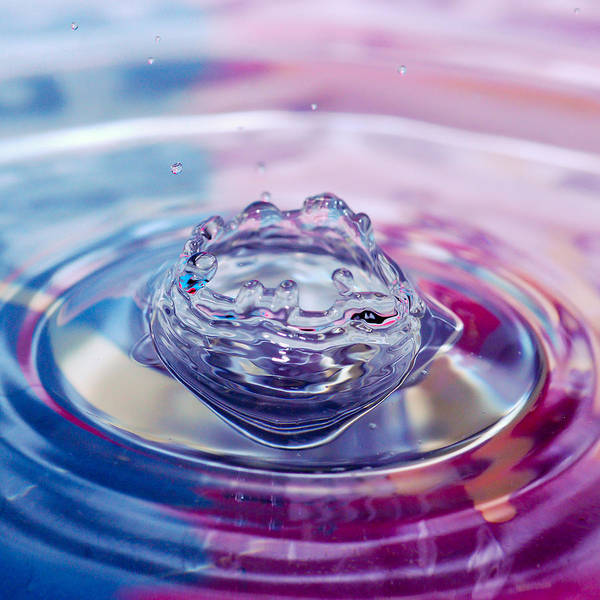 Photograph - Water Splash Bowl by Crystal Wightman