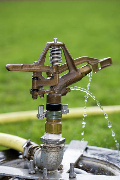 Dripping Water Photograph - Water Sprinkler by Gustoimages/science Photo Library