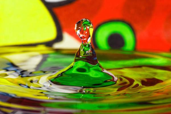 Photograph - Water Stick by Peter Lakomy