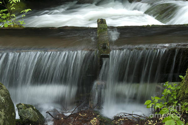 Wall Art - Photograph - Water Trough Overflow by Paul W Faust -  Impressions of Light