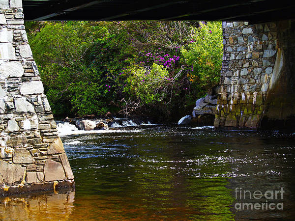 Photograph - Water Under The Bridge by Patricia Griffin Brett