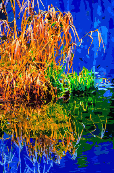 Blades Mixed Media - Water Weeds by Brian Stevens