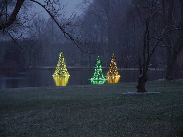 Photograph - Water Xmas Lights by Richard Reeve